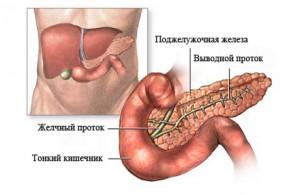 Причины и симптомы проявления панкреатита у детей.