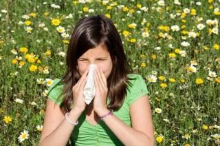 Симптомы и признаки проявления аллергического насморка.