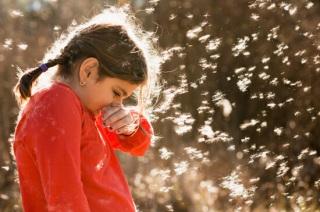 Признаки проявления сезонного аллергического ринита.