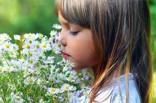 Лечение поллиноза у взрослых и детей.