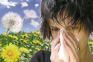 Причины проявления заболевания на пыльцу.
